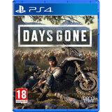 Игра Days Gone для PS4 Русская версия