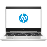 Ноутбук HP ProBook 445 G7 Pike Silver (7RX17AV_V3)
